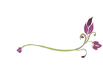 Tulsa Bridal Shows Link